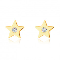 Earrings in 14K yellow gold – five-pointed star with a zircon, smooth shiny surface